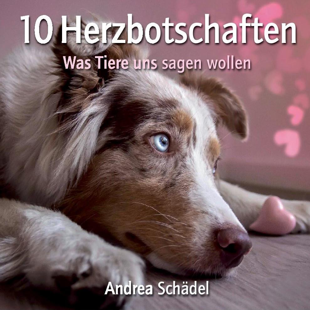 Buch: 10 Herzbotschaften der Tiere
